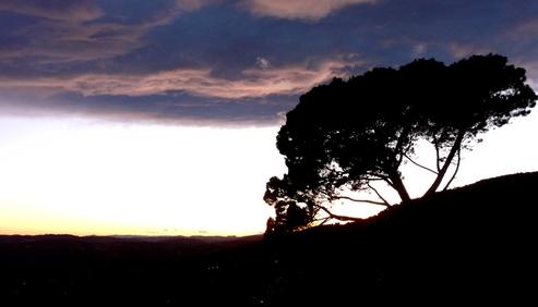 ciel du soir 5 fév. 2010