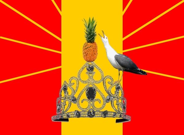 image-doubrichnie_drapeau