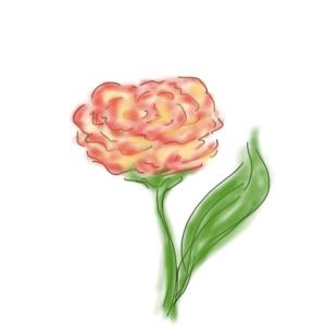 dessin_bouquet-1