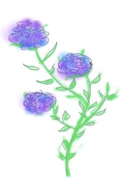 dessin_bouquet-3