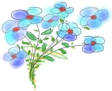 dessin_bouquet-8